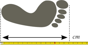 Lábfej hossz meghatározása vonalzóval